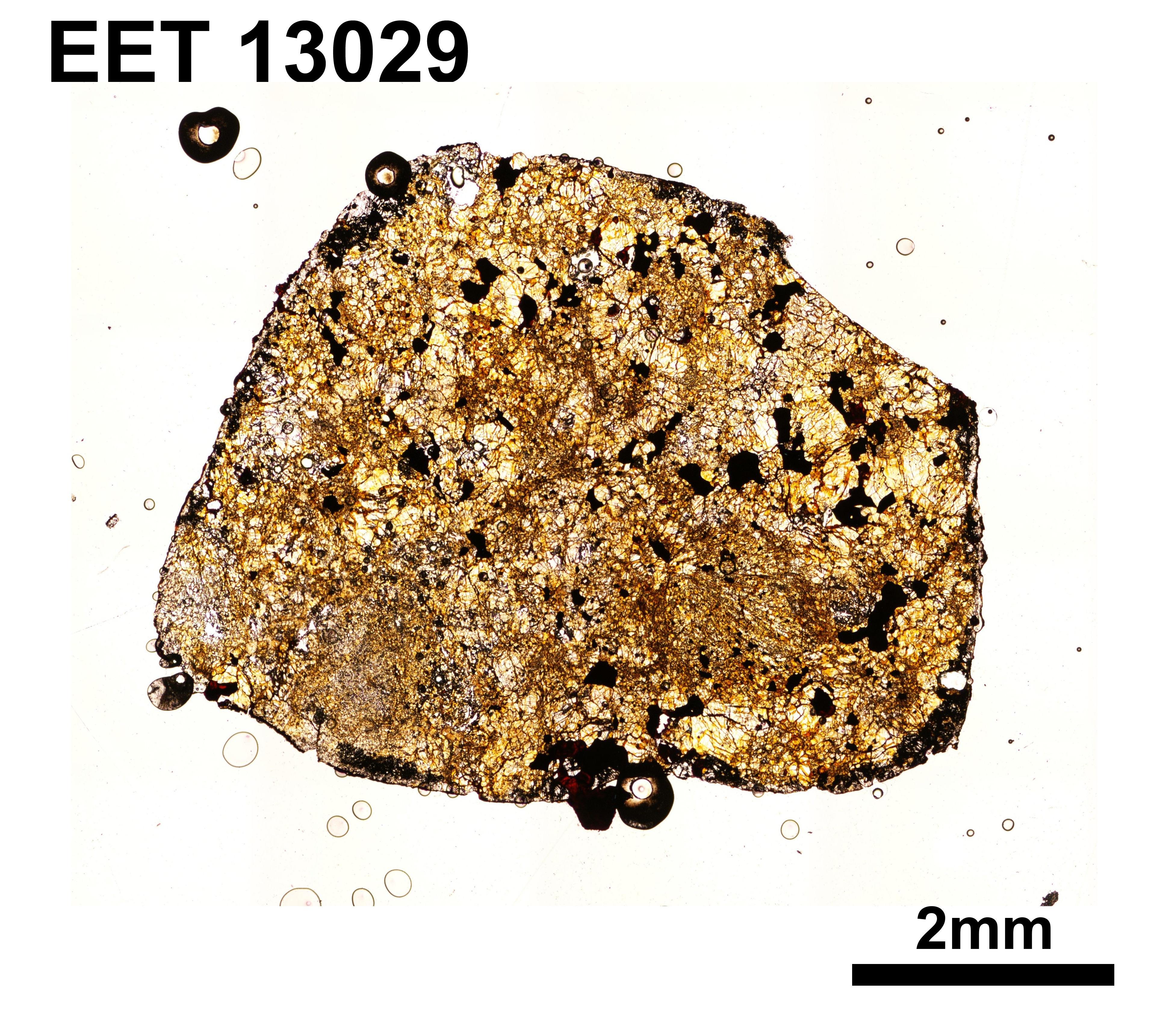EET 13029 O.jpg