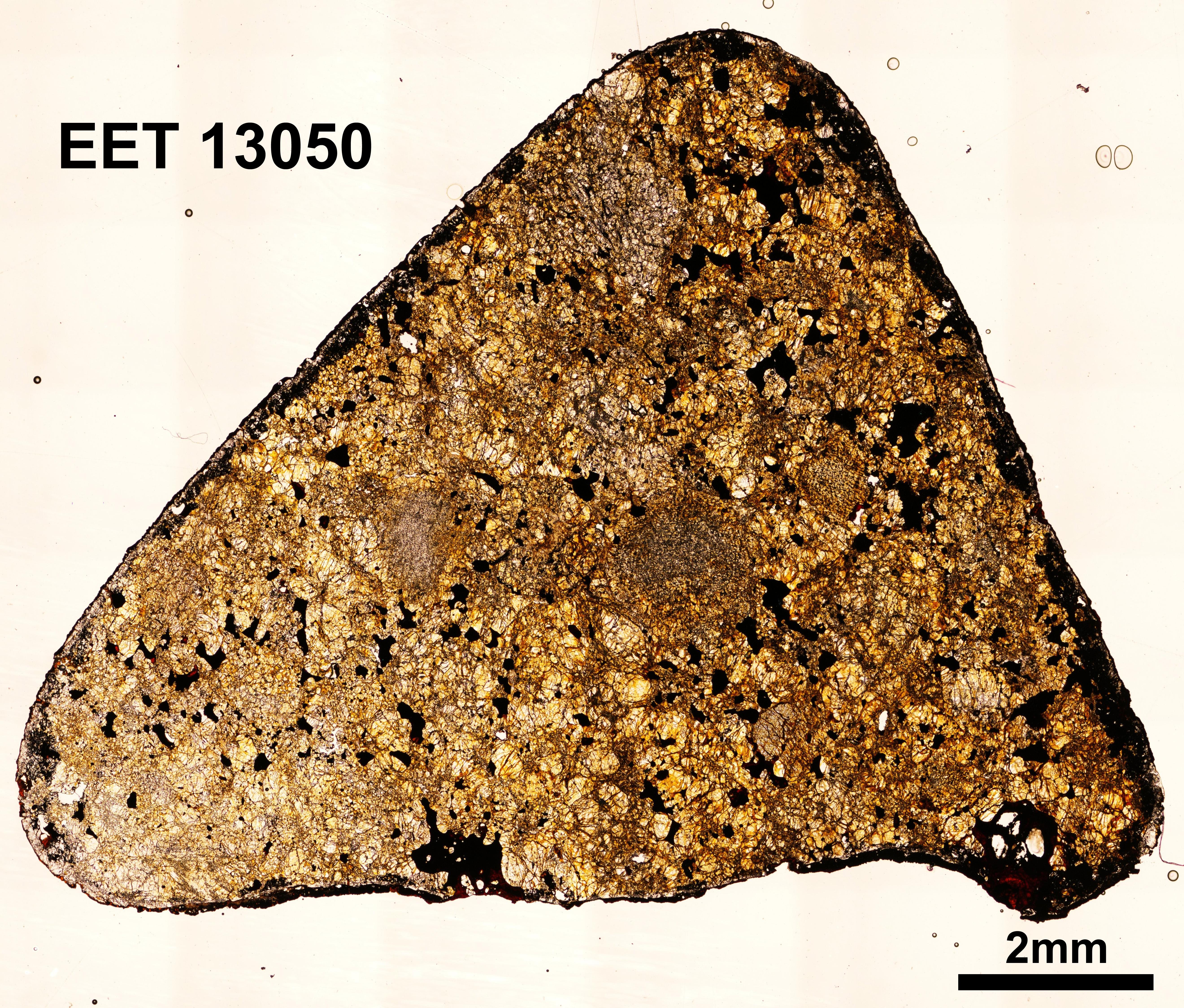 EET 13050 O.jpg