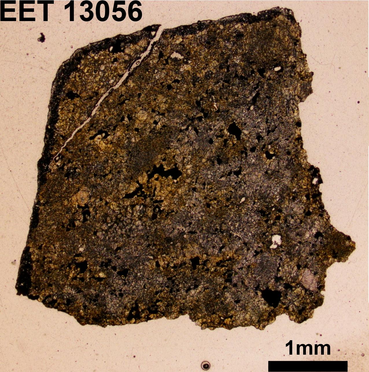 EET 13056 O.jpg